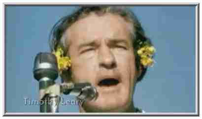 Former Harvard Professor Timothy Leary asked students to &quot;turn on, tune in and drop out.&quot; <font face=Arial size=-2>(Source: PBS)</font>