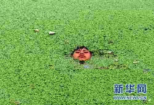 Keeping cool amid a duckweed crisis <font face=Arial size=-2>(Source: Global Times)</font>