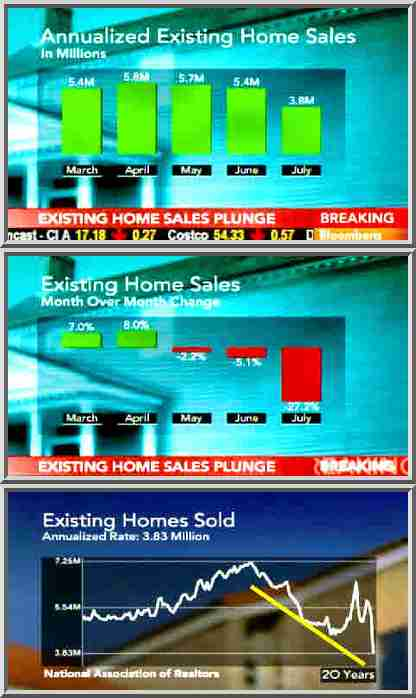 July 2010 - existing home sales <font face=Arial size=-2>(Source: Bloomberg TV)</font>
