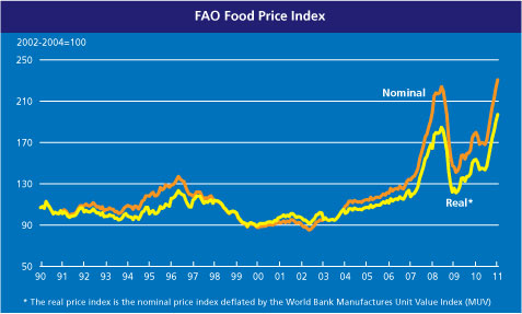 FAO Food Price Index -  1991 - January 2011