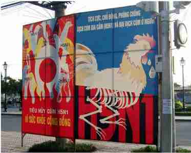 A Vietnamese billboard warning about bird flu