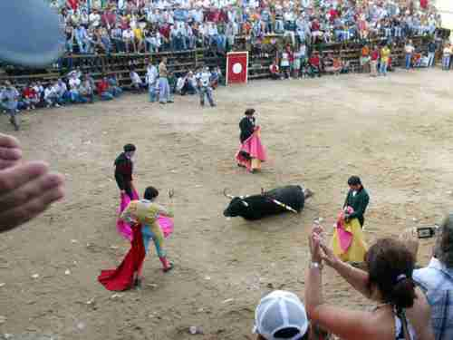 Bullfight to the death televised in Portugal