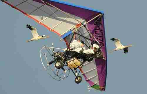 Putin, dressed as a bird, flies in motorized hang glider with cranes in September (Ria Novosti)
