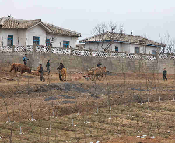 Farm workers in North Korea (Michael Havis)